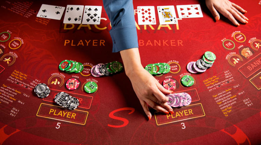 Most trusted online casino gambling with various bonuses
