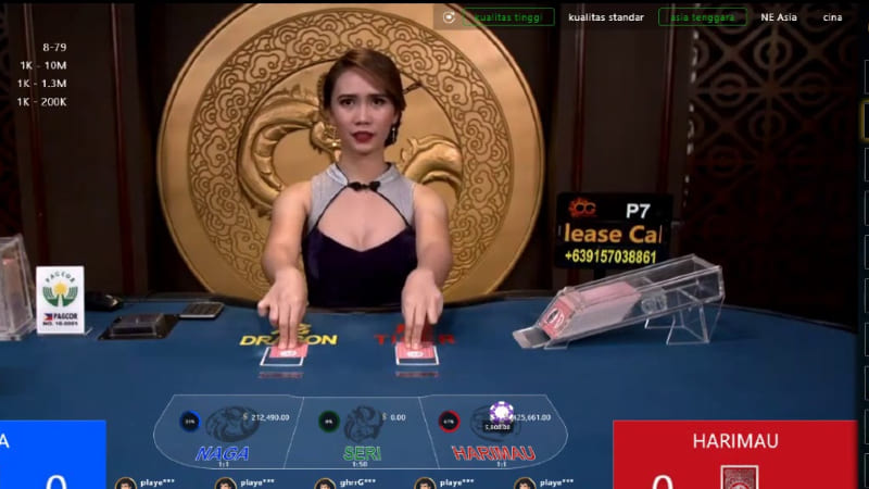 Looking To Maintain Online Casino Pulses